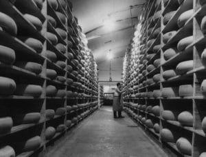 Affineur dans une cave de fromages Entremont.