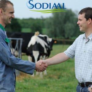 Deux collaborateurs de Sodiaal se serrent la main.
